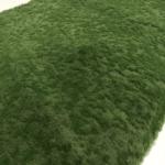 Mousse Végétal V6 2