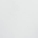 Blanc 96001 (+399€)